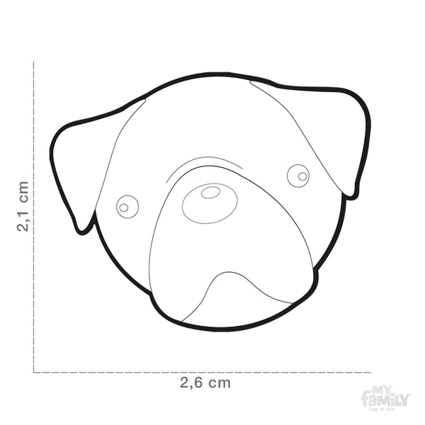 Pet ID Tag | Pug + FREE Engraving
