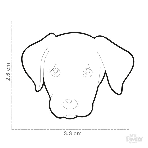 Pet ID Tag | Labrador + FREE Engraving