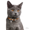 My Family Pet ID Tag | Chartreux Cat + FREE Engraving | Peticular