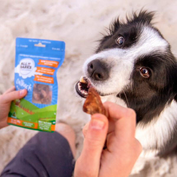 All Barks Outback Snacks Dog Treats | Peticular
