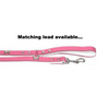 Dogue Bones Leather Dog Collar | Fuchsia | Peticular