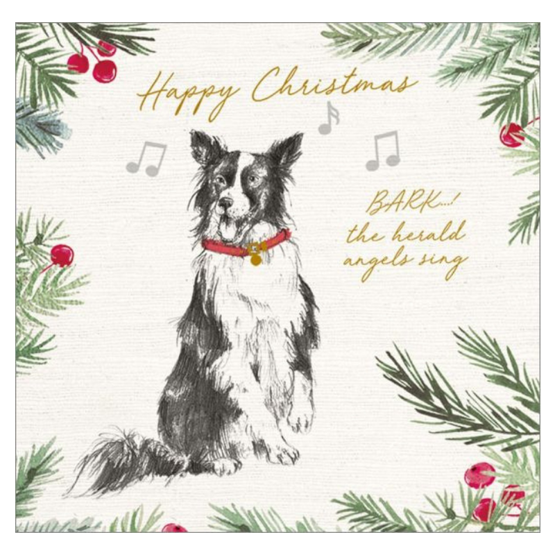 Vevoke Christmas Card Pack | Bark The Herald | Peticular