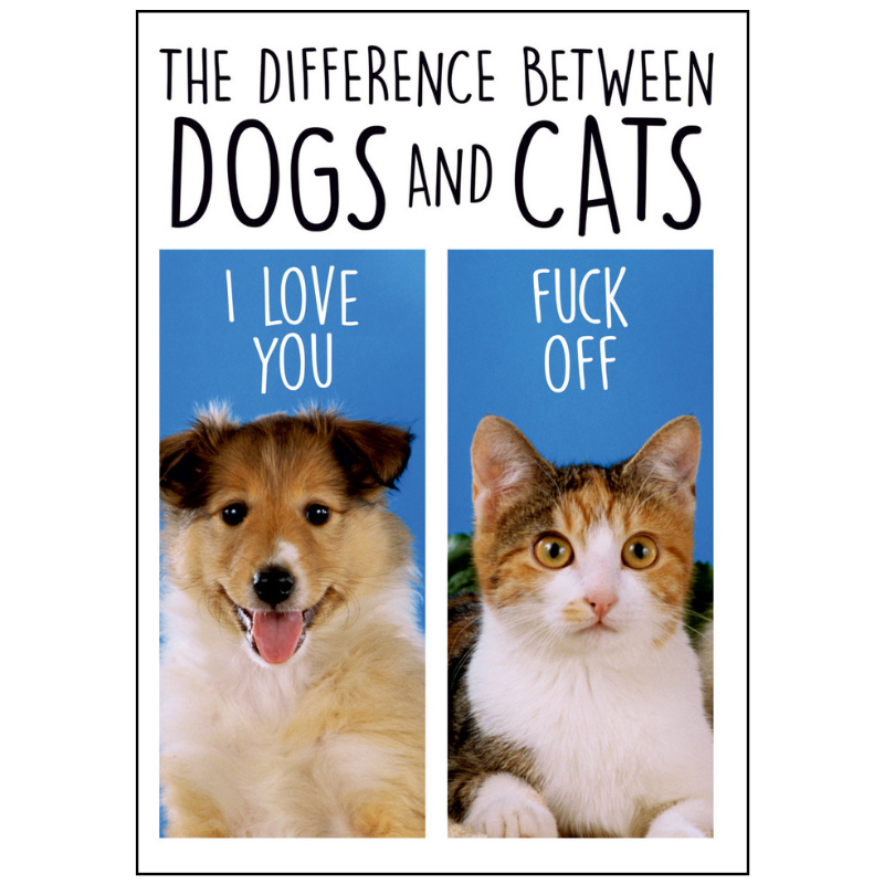Blank Card | Difference Between Dog & Cats