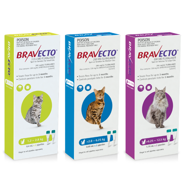 MSD Animal Health Bravecto Cat Flea & Tick Treatment | Peticular