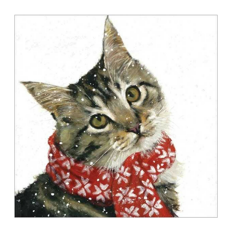 Vevoke Christmas Card Pack | Ollie Cat | Peticular