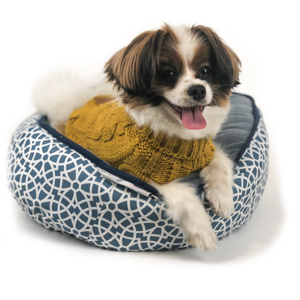 Chunky Knit Dog Jumper | Aurora