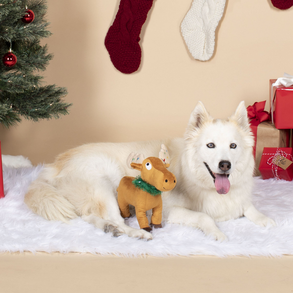 Merry Christmoose Dog Toy