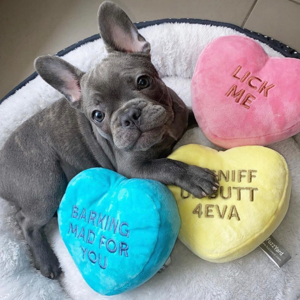 Candy Hearts Plush Dog Toys