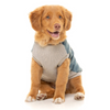 FuzzYard Denim MacGyver Dog Jacket | Peticular