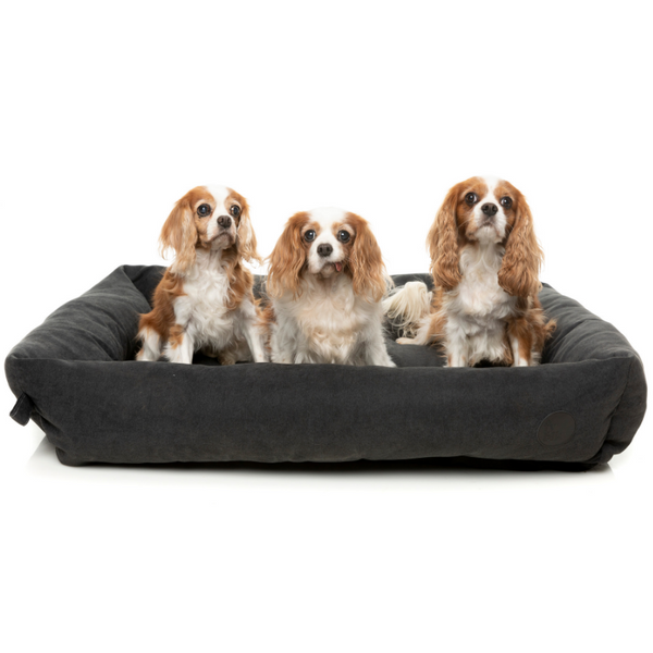 The Lounge Pet Bed | Charcoal