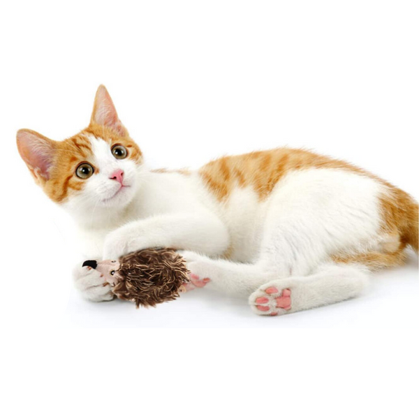 GiGwi Melody Chaser Cat Toy | Hedgehog | Peticular