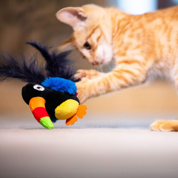 GiGwi Melody Chaser Cat Toy | Toucan | Peticular