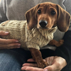 Huskimo Cable Knit Dog Jumper | Oatmeal | Peticular