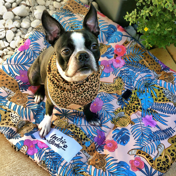 Indie Boho Pet Travel Mat | Leopard Luxe | Peticular