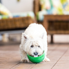 Innovative Pet Products LickiMat Wobble | Peticular