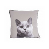 Mog & Bone Throw Cushion | Persian Blue | Peticular
