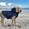 Huskimo Mt Buller Waterproof Dog Coat | Navy | Peticular