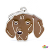 My Family Pet ID Tag | Vizsla + FREE Engraving | Peticular