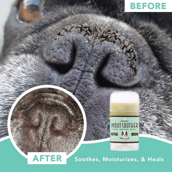 Natural Dog Snout Soother | Stick - Peticular