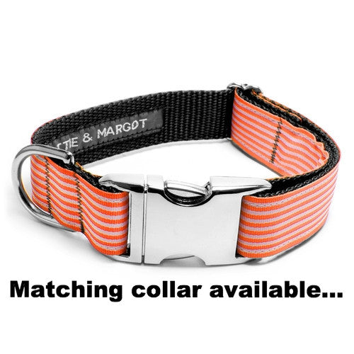 MATTIE + MARGOT Neon Orange Classic Stripe Dog Lead | Peticular