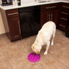 Outward Hound Fun Feeder Slo-Bowl | Purple Flower | Peticular