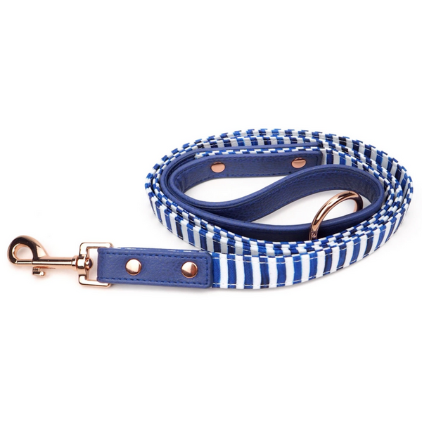 Stripe Squad City Dog Leash
