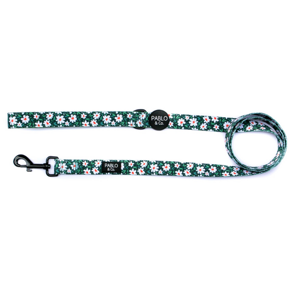 Pablo & Co. Flower Garden Dog Leash | Peticular
