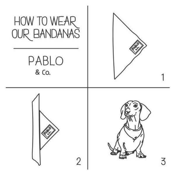 Pablo & Co. Tie-Up Bandana | Bubble O' Bill | Peticular