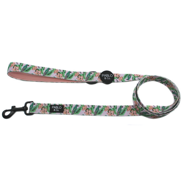 Blushing Parrots Dog Leash