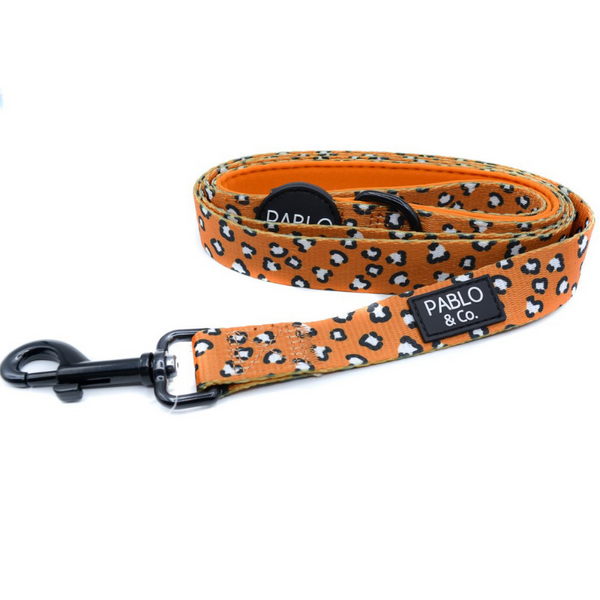 Pablo & Co. That Leopard Print Dog Leash | Peticular