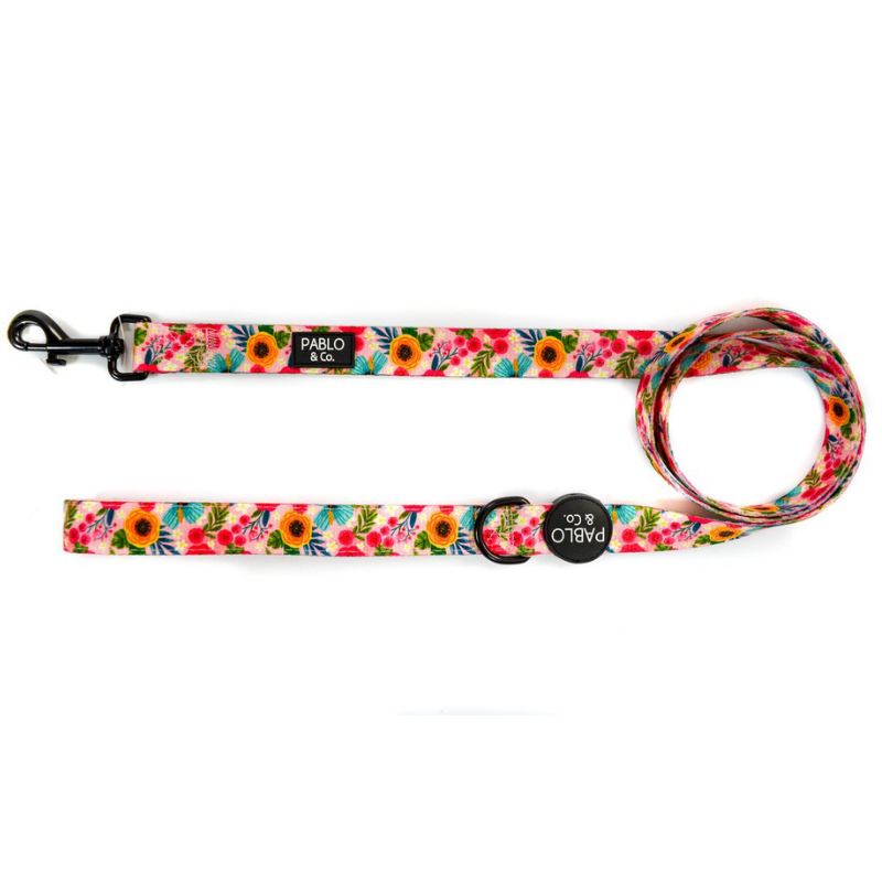 Pablo & Co. The Floral Edit Dog Leash | Peticular