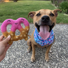 Dipped Pretzel Wool Dog Toy | Strawberry