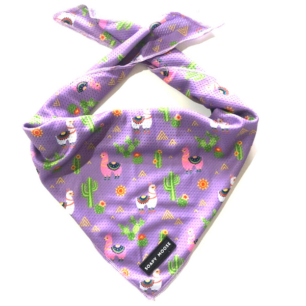 Tie-Up Bandana | Lovely Llamas