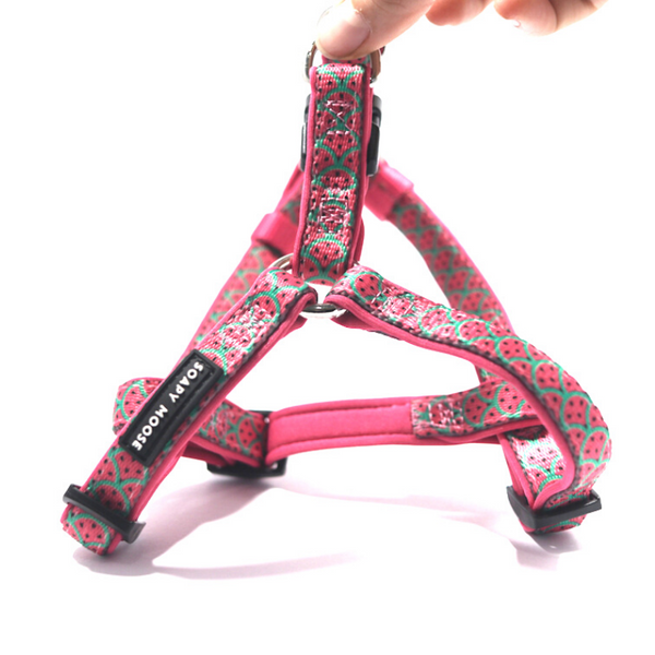 Soapy Moose Hot Pink Watermelon Step-In Dog Harness | Peticular