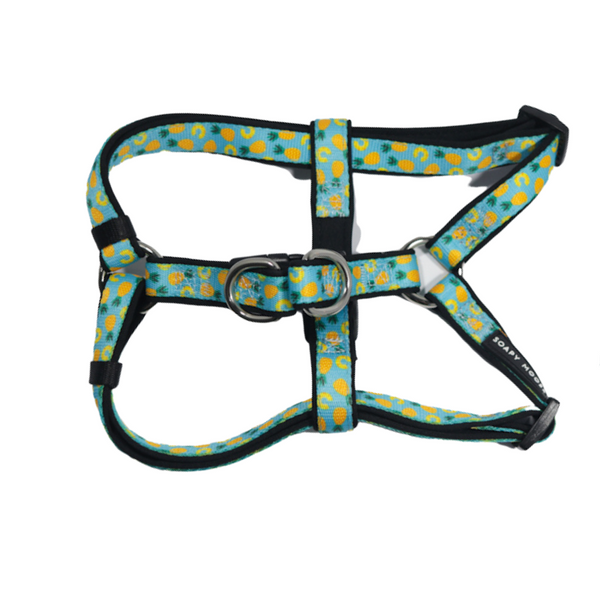 Soapy Moose Pineapple Slice Step-In Dog Harness | Peticular