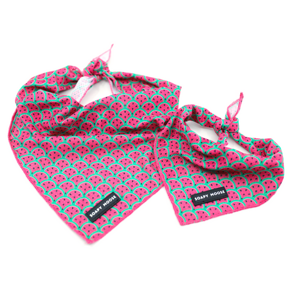 Tie-Up Bandana | Hot Pink Watermelon