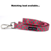 Hot Pink Watermelon Neoprene Collar