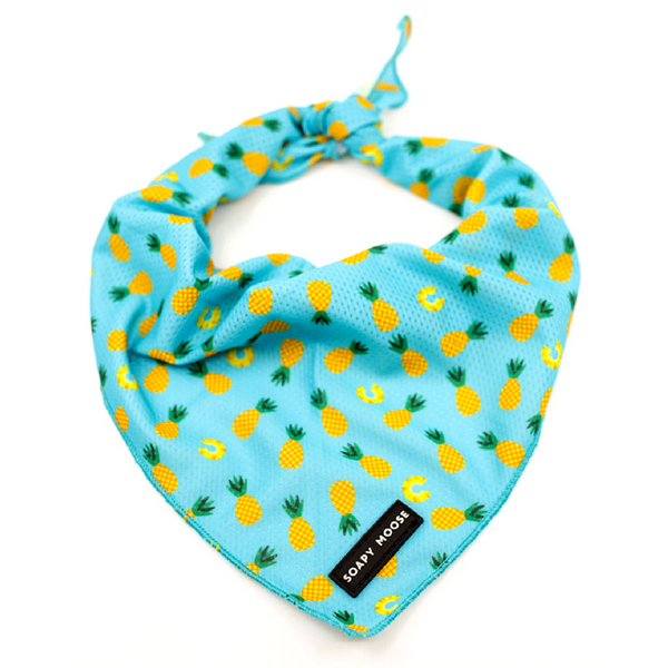 Tie-Up Bandana | Pineapple Slice