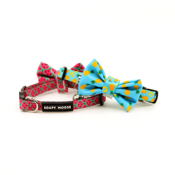 Soapy Moose Pineapple Slice Cat Collar | Peticular