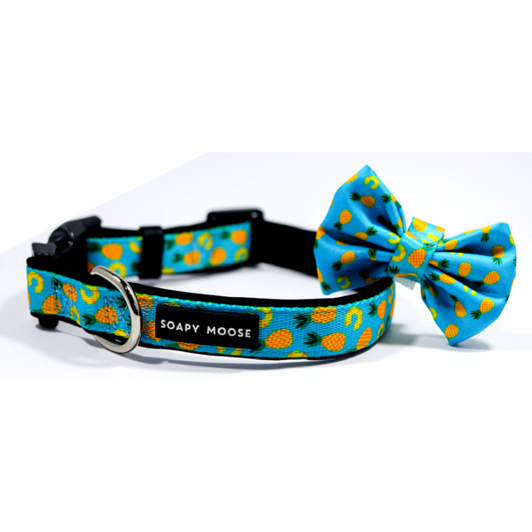 Soapy Moose Pineapple Slice Collar | Peticular