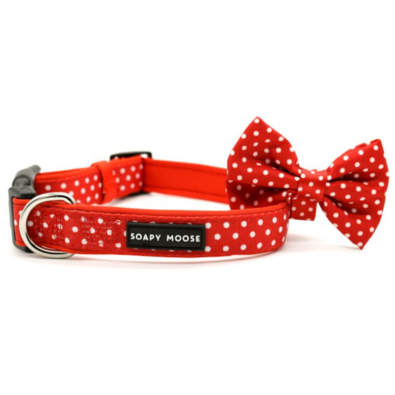 Soapy Moose Red & White Polka Dots Collar | Peticular