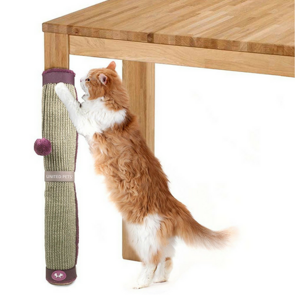 United Pets Cat Scratcher | Peticular
