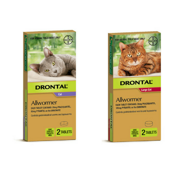 Bayer Drontal Cat Allwormer Tablets | Peticular