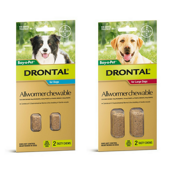 Drontal Dog Allwormer Chewable