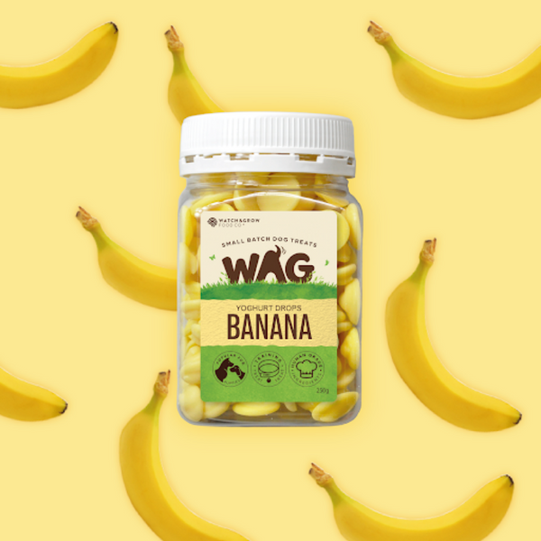 WAG Yoghurt Drops Dog Treats | Banana | Peticular