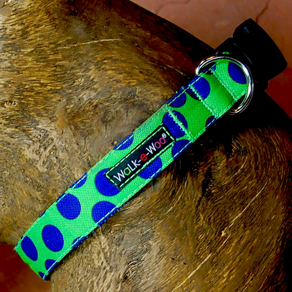 Polka Dot Collar | Neon Blue on Green - Peticular