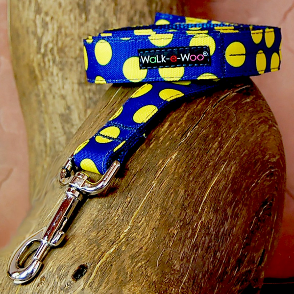 Polka Dot Lead | Neon Yellow on Blue - Peticular
