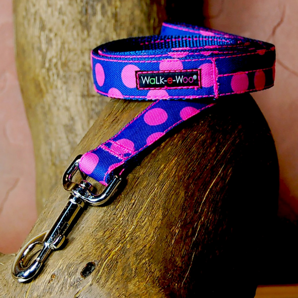Polka Dot Lead | Pink on Blue