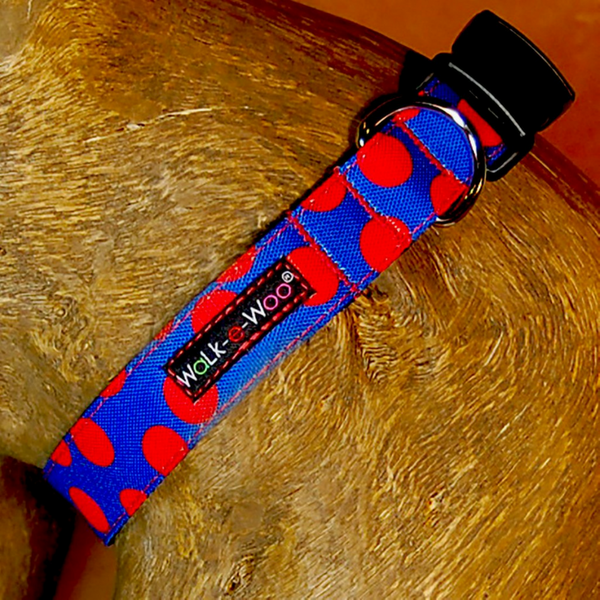 Polka Dot Collar | Red on Blue - Peticular