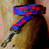 Walk-e-Woo Polka Dot Lead | Red on Blue | Peticular